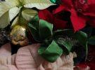 Weihnachtsbrunch  abgesagt
